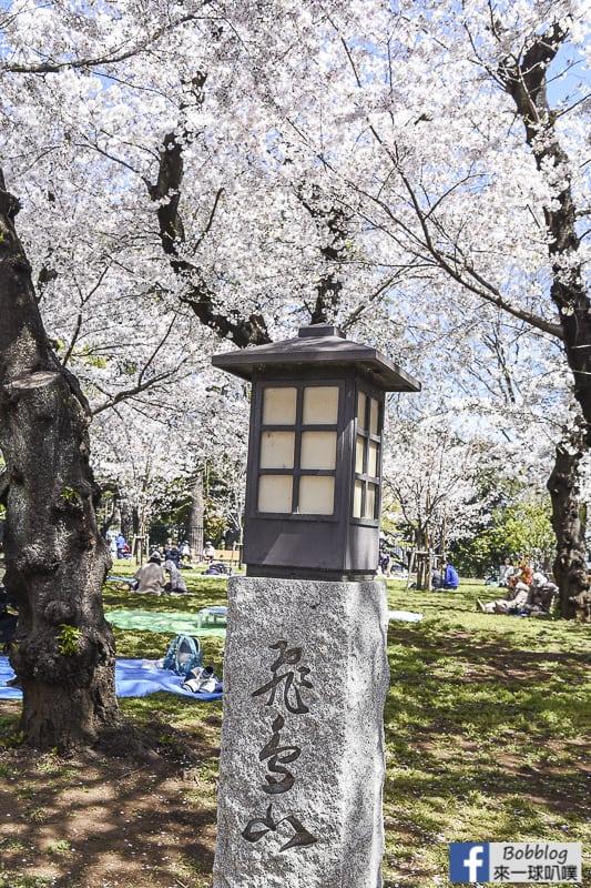 Asukayama park 13