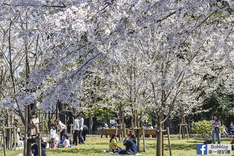Asukayama park 16