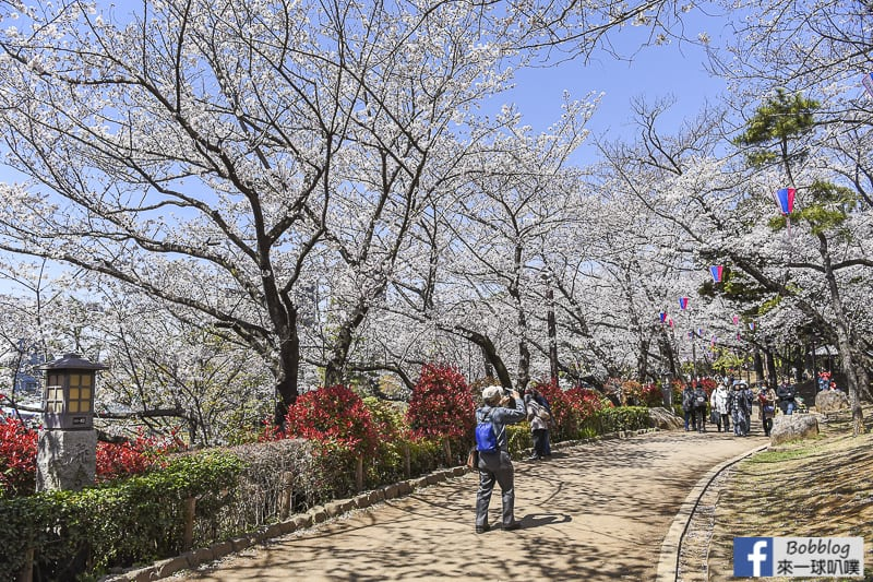 Asukayama park 28