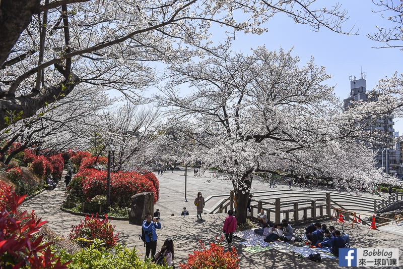 Asukayama park 29