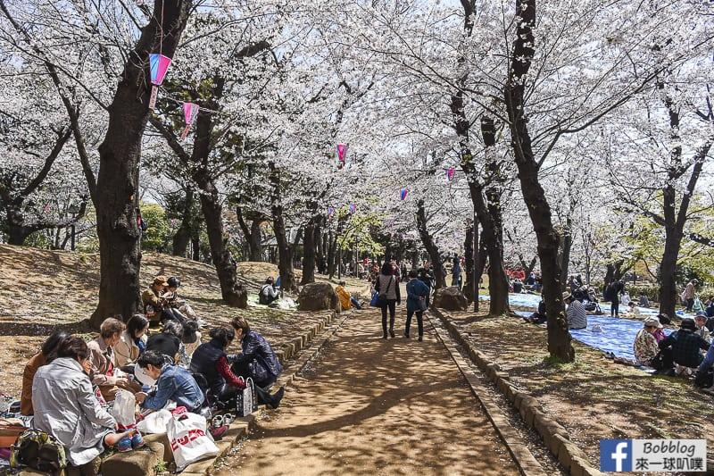 Asukayama park 36