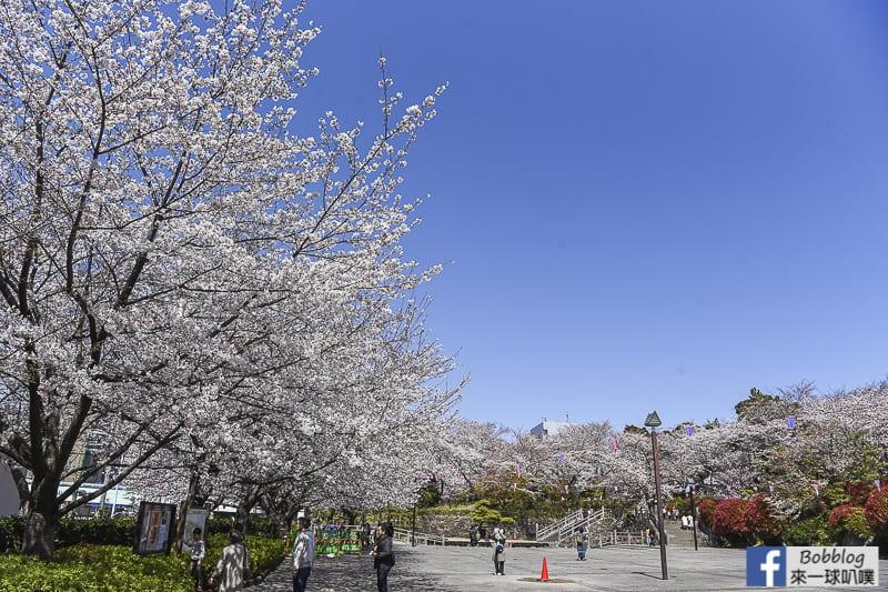 Asukayama park 7