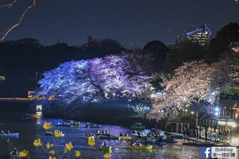 Tokyo chidorigafuchi night sakura 14