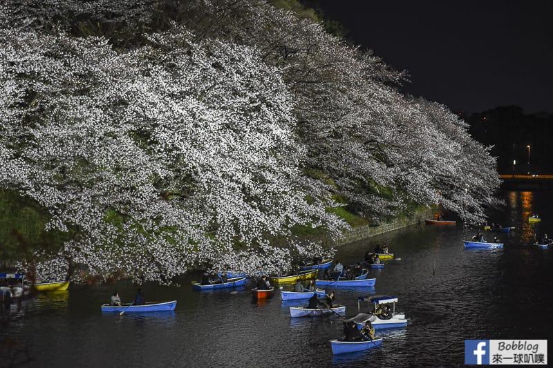 Tokyo chidorigafuchi night sakura 16