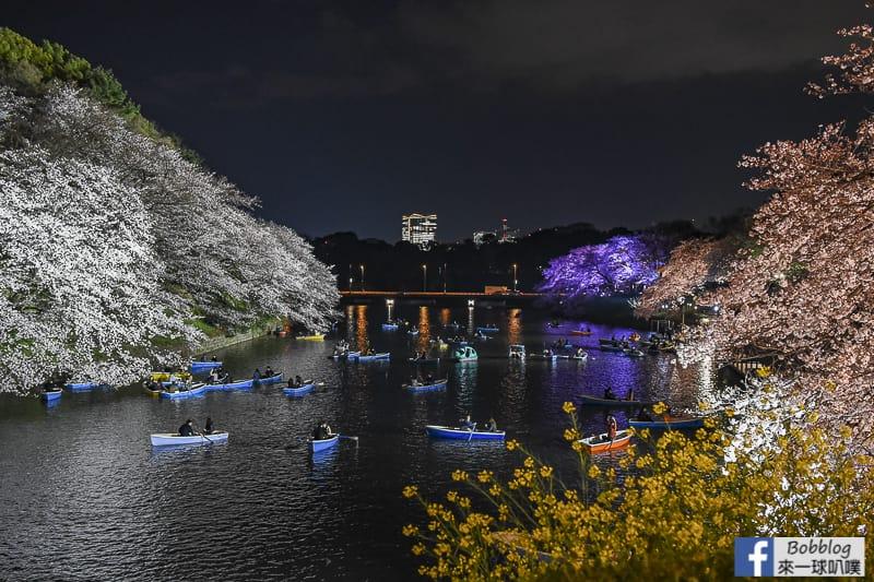 Tokyo chidorigafuchi night sakura 18