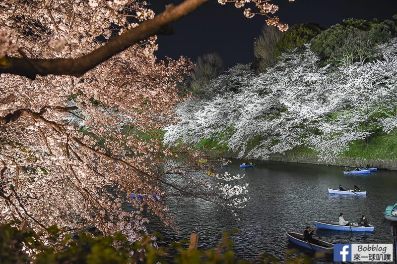 Tokyo chidorigafuchi night sakura 22