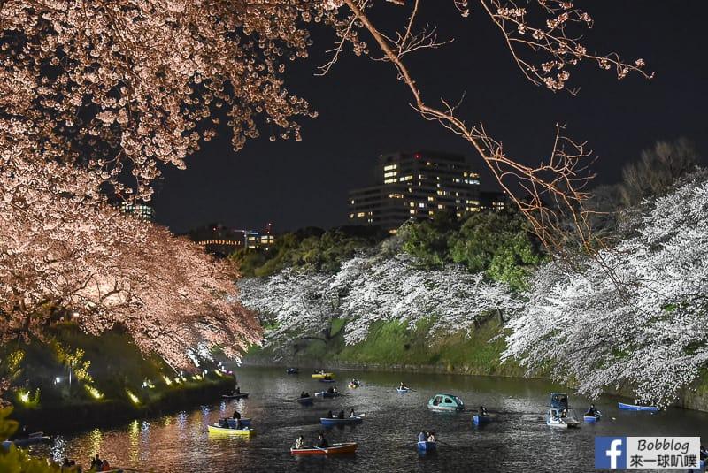 Tokyo chidorigafuchi night sakura 26