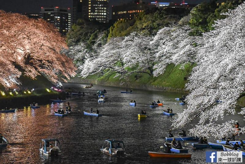 Tokyo chidorigafuchi night sakura 29