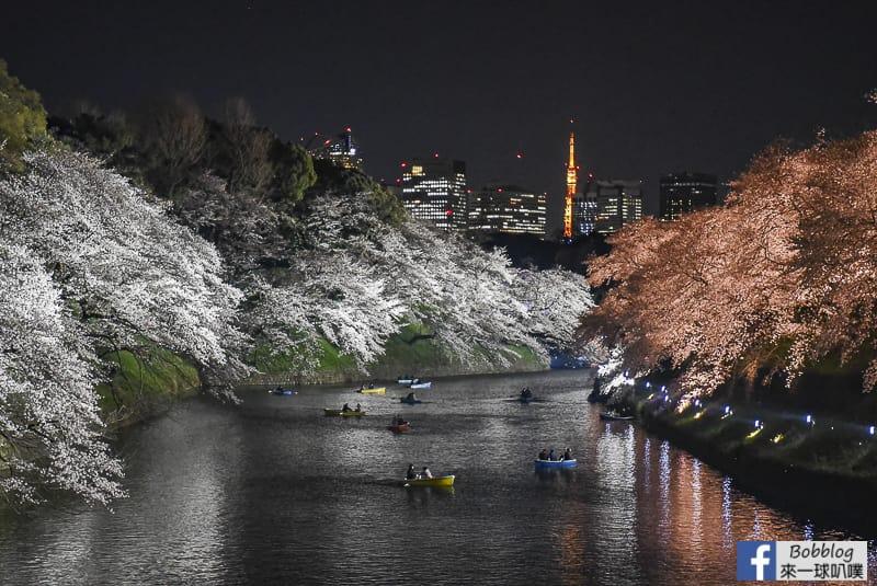 Tokyo chidorigafuchi night sakura 37