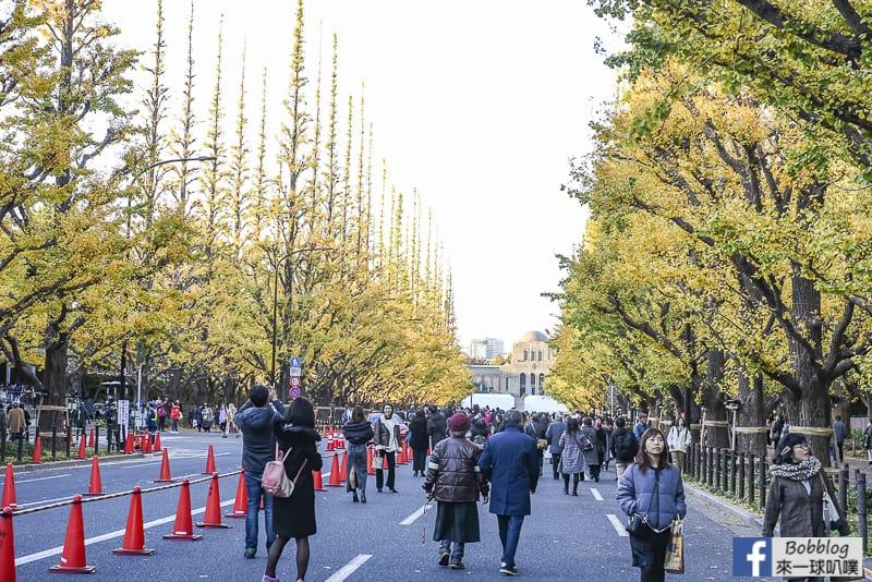 Meijijingu gaien ginkgo tree 3