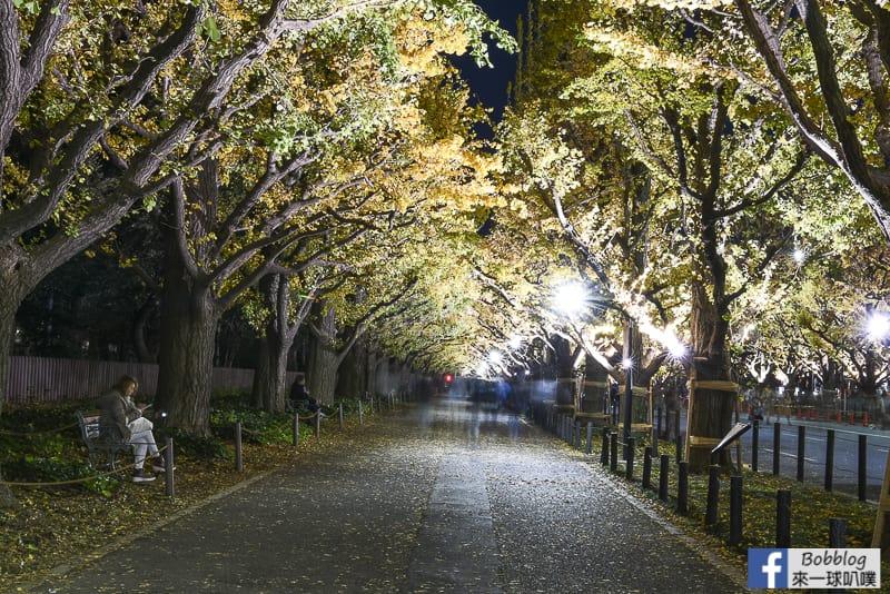 Meijijingu gaien ginkgo tree 44