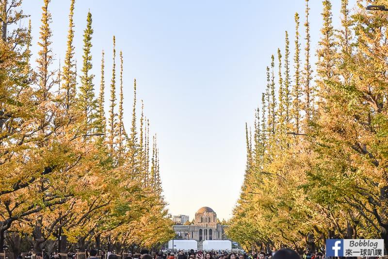 Meijijingu gaien ginkgo tree 8