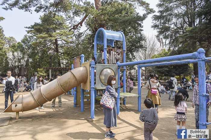 Omiya park sakura 39