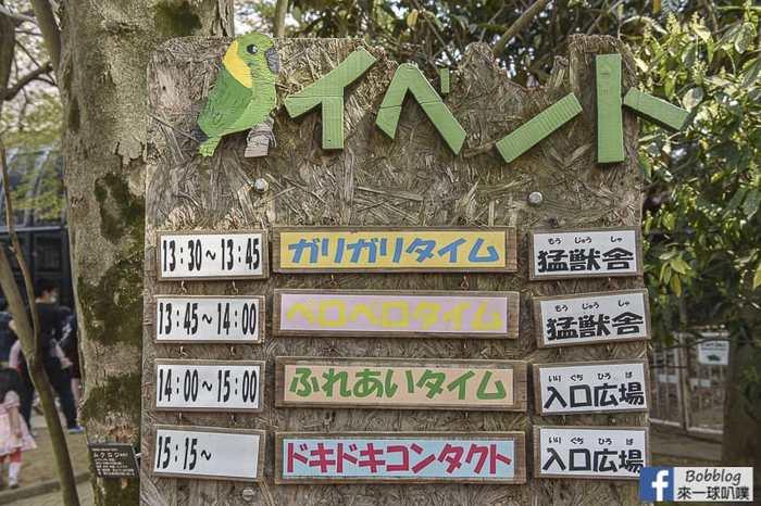 Omiya park sakura 50