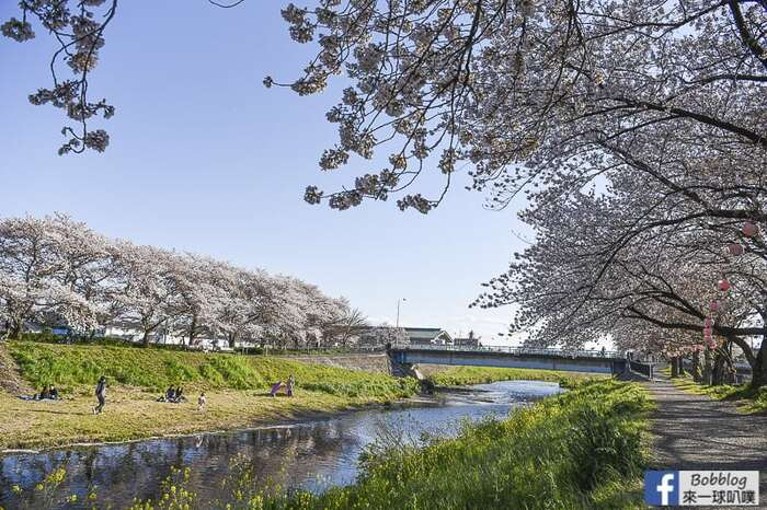 Saitama Kurome River Sakura 13