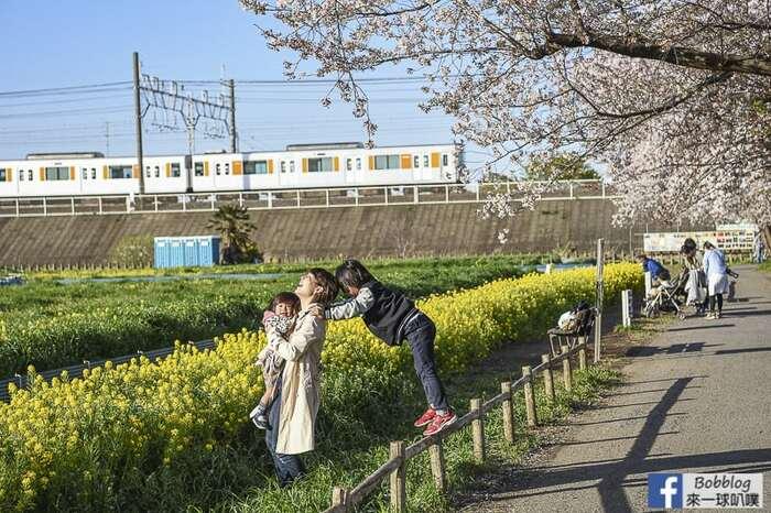 Saitama Kurome River Sakura 39