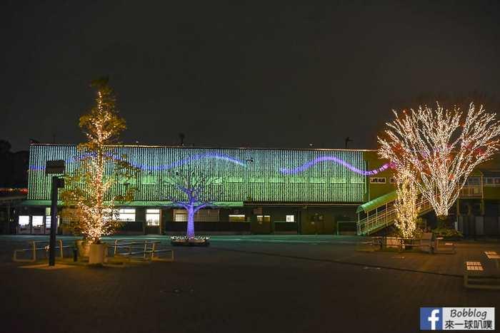 tokyo-mega-illumination-13