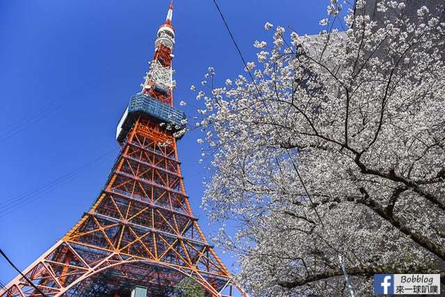 tokyo-tower-9