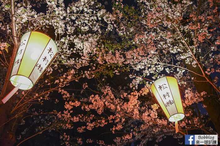 Ueno Park night sakura 18