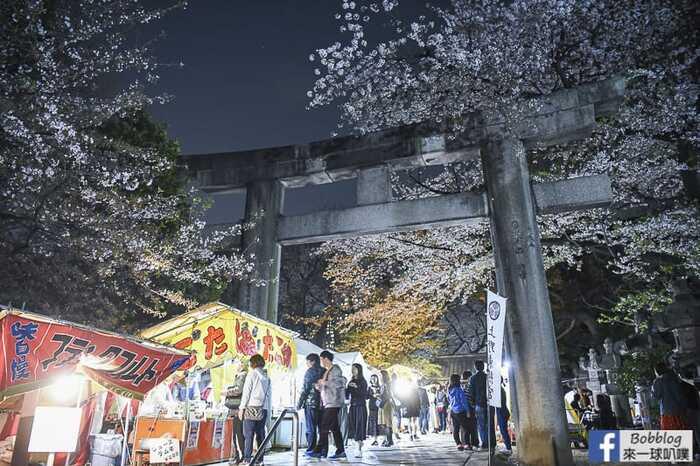 Ueno Park night sakura 26