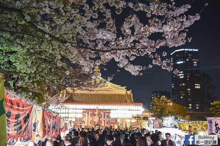 Ueno Park night sakura 31
