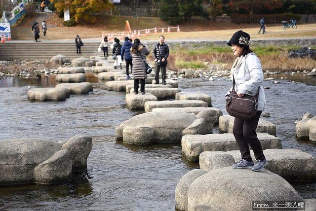 京都鴨川散步,京都鴨川櫻花(美麗枝垂櫻) @來一球叭噗日本自助攻略