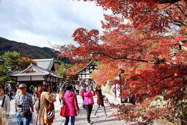 京都嵐山-天龍寺07