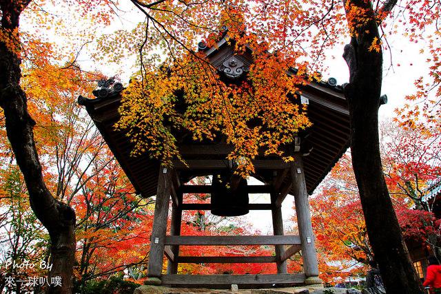 嵐山旅遊景點-常寂光寺49