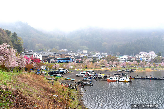 河口湖-淺川溫泉街17