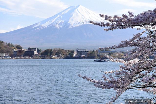 産屋ケ崎+河口湖大橋05